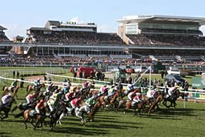 grand national field