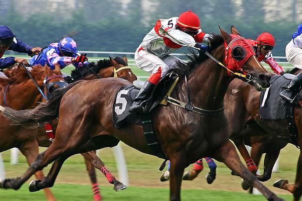 Indian horse race betting tips notar paul bettingen luxembourg airport