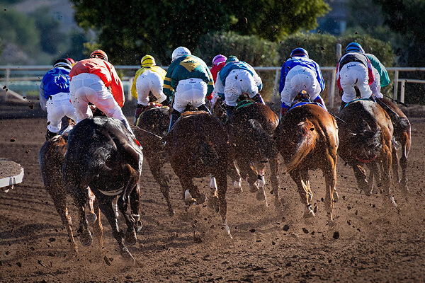 Uk horse racing betting rules on blackjack what does a bet on 4 numbers in roulette pay
