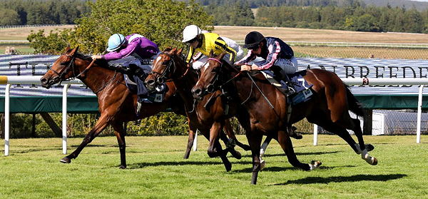 World sports racing betting tips sports betting teaser odds